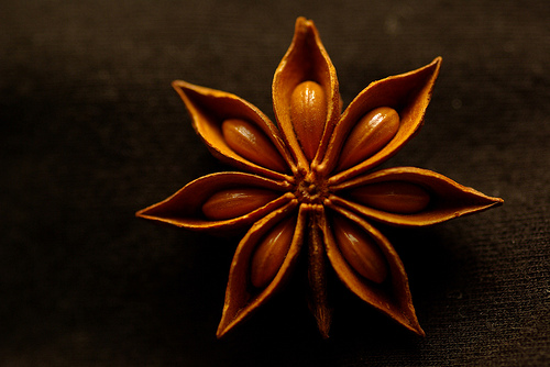 Healing with Star Anise