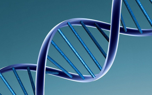 All about DNA strands activation