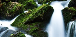What does Reiki flows where it needs to mean