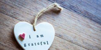I Will Show Gratitude to Everything.