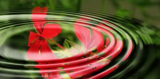How to forgive - with Reiki