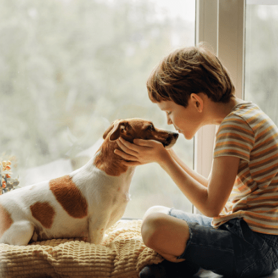 8 Quick Reiki Tips and Symbols for New Pet Owners